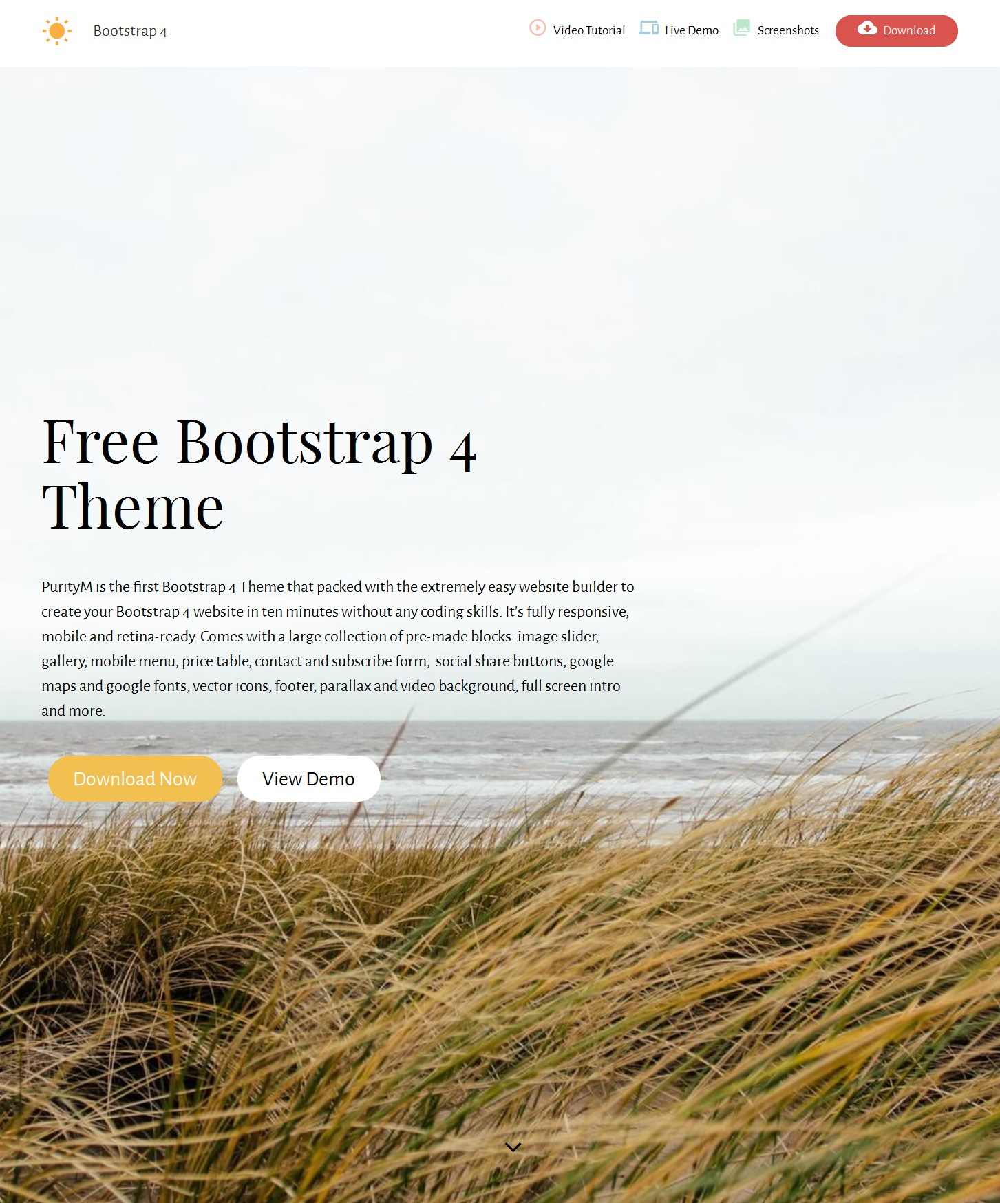 Responsive Bootstrap News Theme