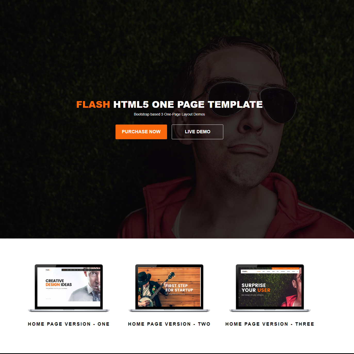 Free Download Bootstrap Flash Templates