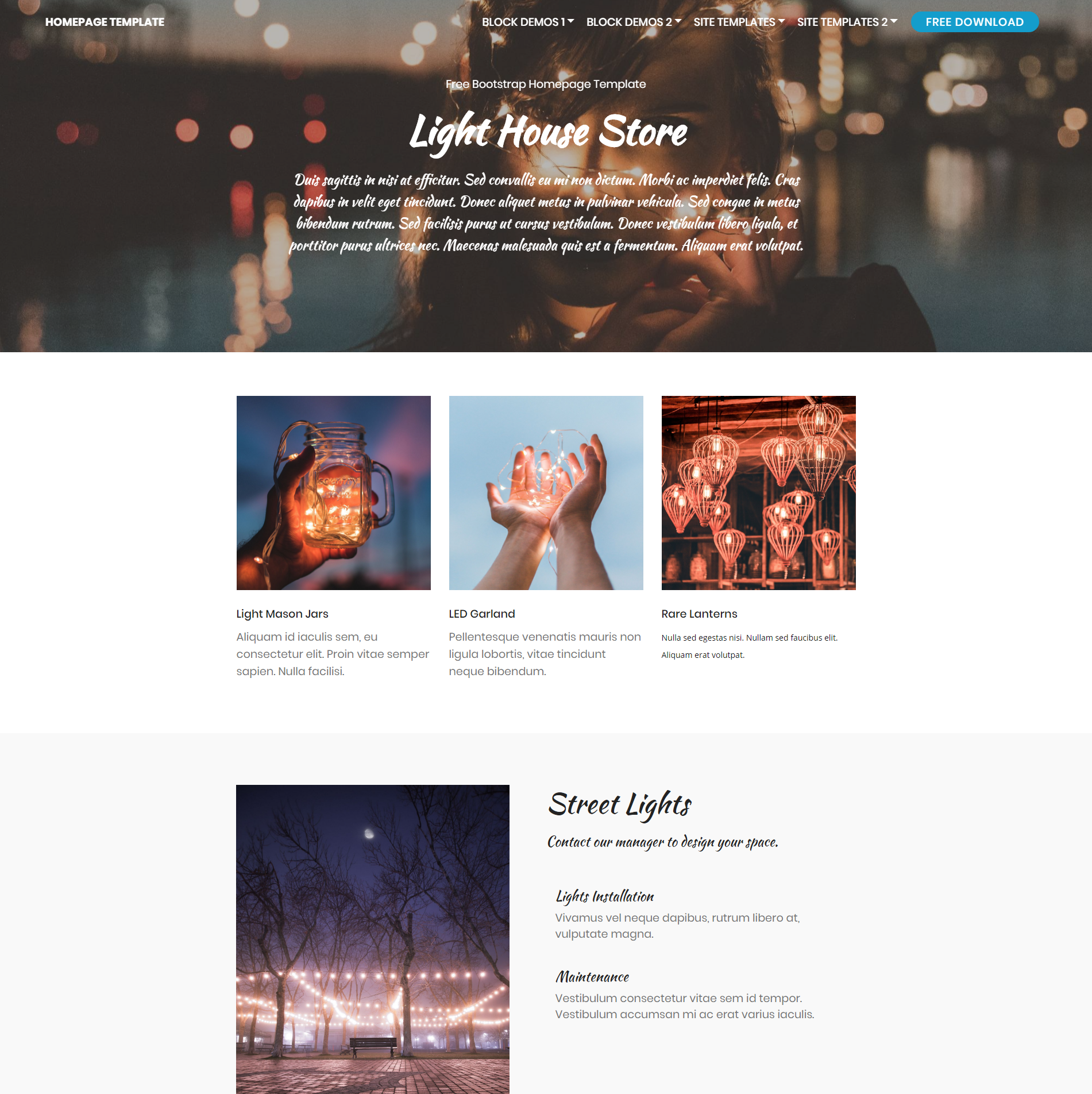 Responsive Bootstrap Homepage Themes