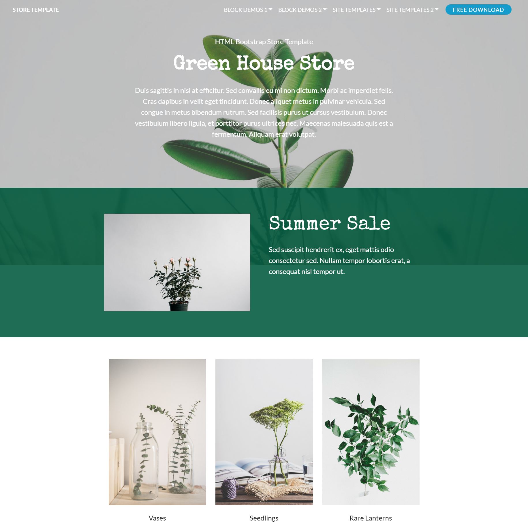 HTML Bootstrap Store Themes